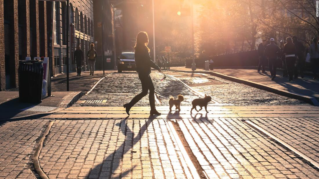 Former employees of dog-walking startup Wag, which raised $300M from SoftBank and replaced CEO in Jan. 2018, describe slowed growth, multiple layoffs, and more (Sara Ashley O'Brien/CNN)