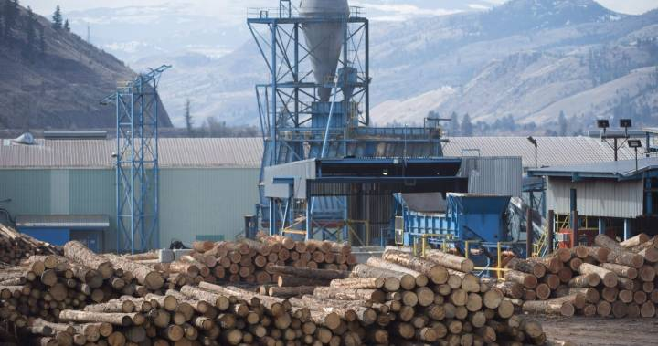 Twice laid off due to sawmill closings, B.C. worker ready for a new career – Global News