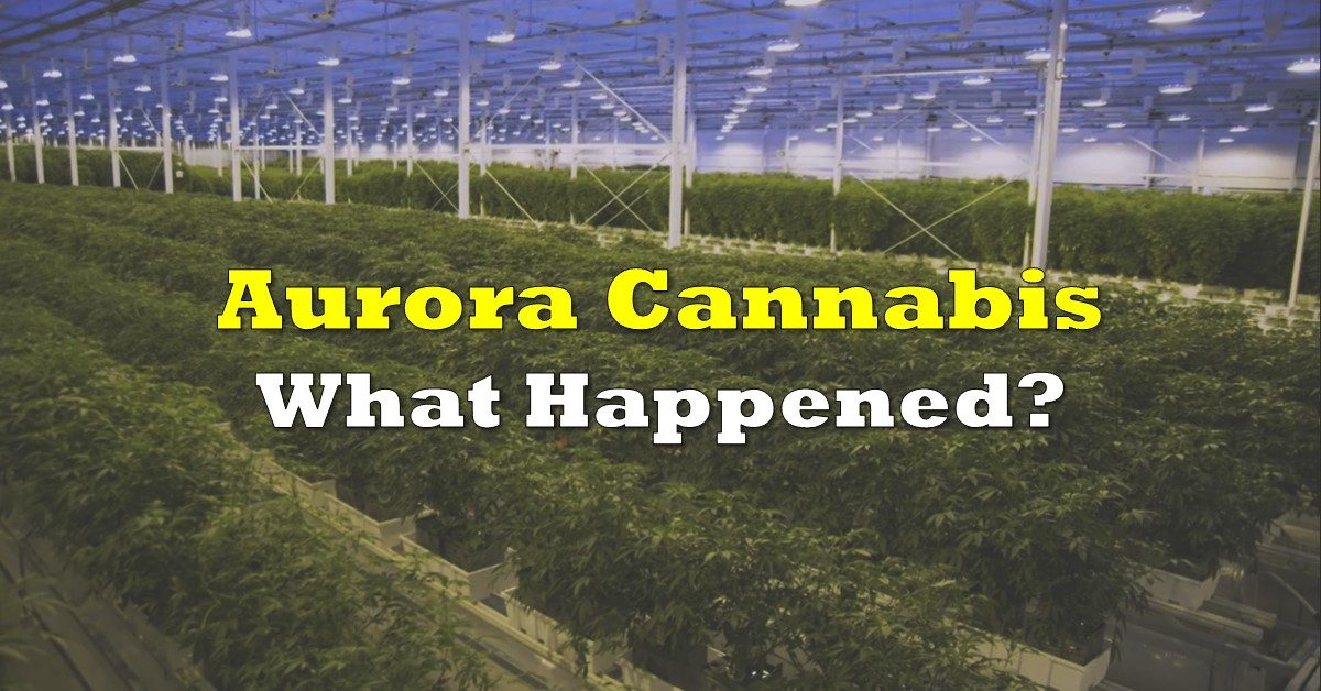 Aurora Cannabis: What Happened? – The Deep Dive
